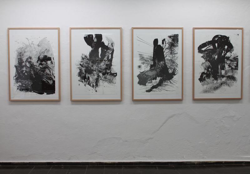 Lithografien2011 Kopie